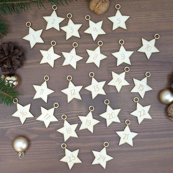 Anhänger - Adventskalender Sterne verteilt  zwischen Tannenzapfen- und Zweigen